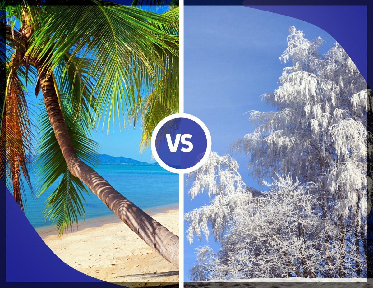 Summer vs. Winter – The Debate