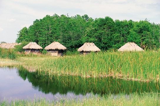 Everglades National Park. Photo credit: Visit Florida.