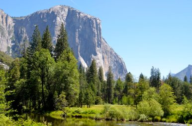 El Capitan in Yosemite National Park, California. - Member Lois M.