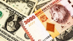 Earn 8% per annum in US Dollars on Tanzanian government bonds, via a European investment vehicle