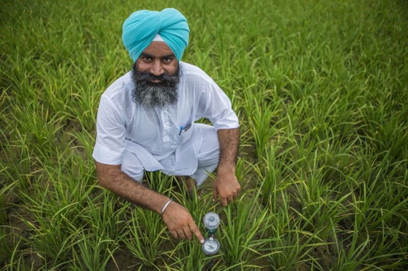 Harpreet Singh checks the water level through a Tensiometer in his paddy fields in Birnaryna as a part of the Climate Smart Village (CSV) programme.  Image by Prasanth Viswanathan. Used with permission
