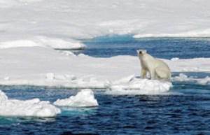 As the ice melts: The Scramble for the Arctic