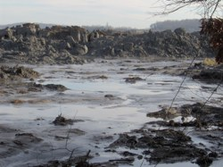 EarthTalk: Environmental Impact of the December Coal Ash Spill in Tennessee