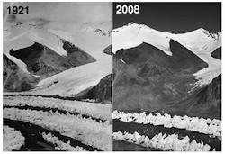 Good News for Himalayan Glaciers – Bad News for the IPCC