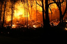 New Research Shows Increased Risk of Wildfire from Global Warming