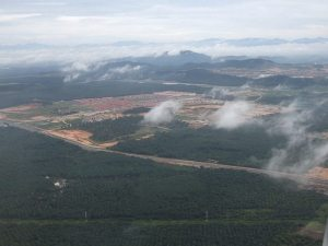 Deforestation is a major contributor to anthropogenic carbon emissions