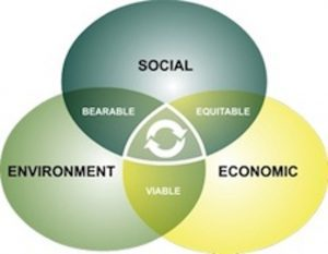Sustainability in business and the modern world