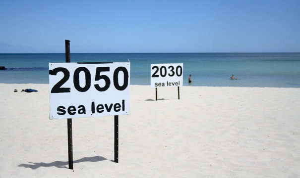 $11.9 Trillion: Price Tag on Climate Change Coral Reef Impacts