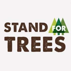 Prince Ea raises awareness about deforestation in support of Stand for Trees
