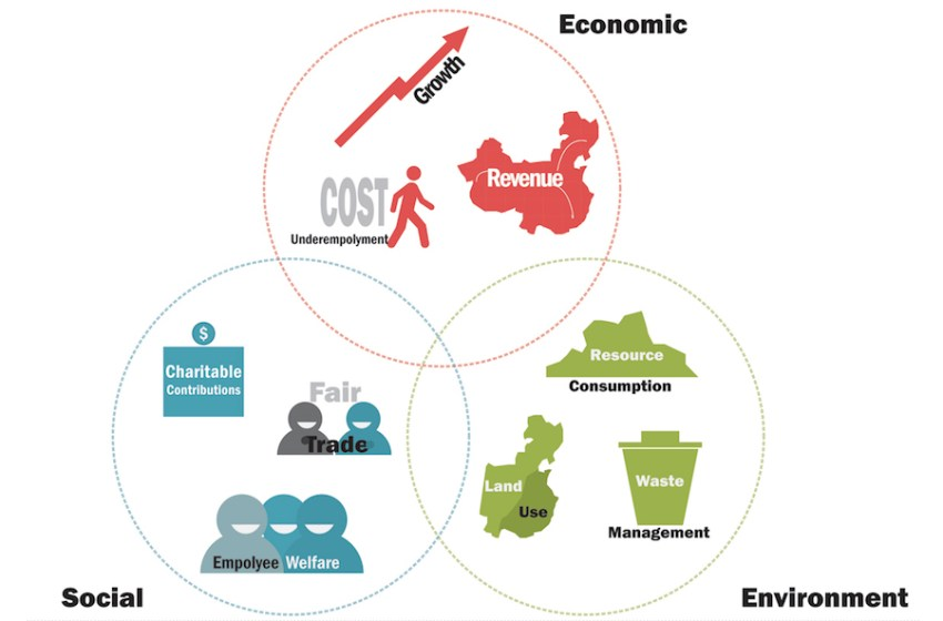 The Growth of Environmentally and Socially Responsible Investing