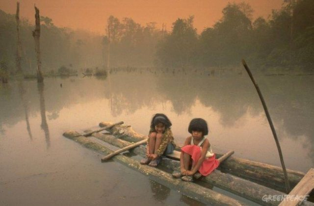 indonesia forest fires children on lake: greenpeace
