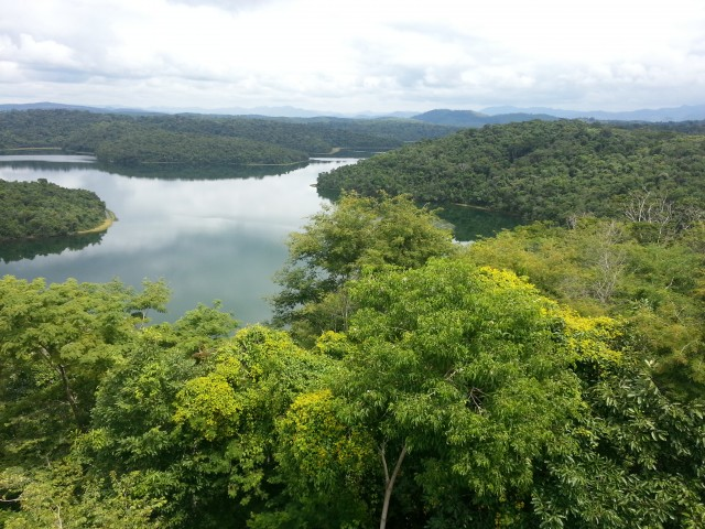 Mimicking Nature, Suriname Permeable Dam Project Prevents Coastal Erosion