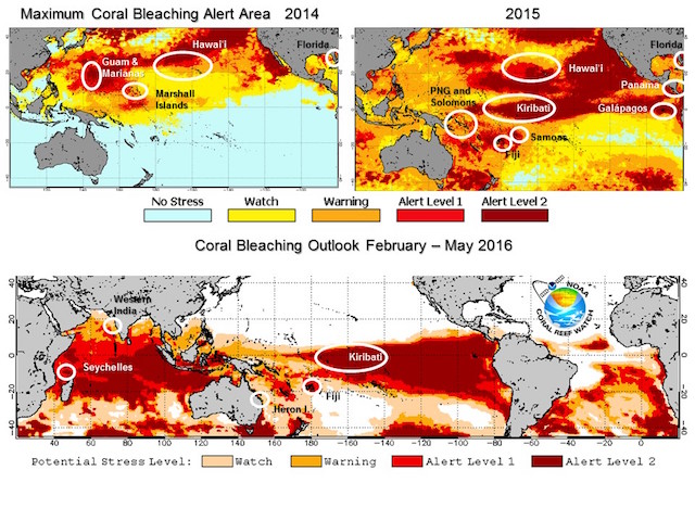 climate change, El Nino and coral bleaching