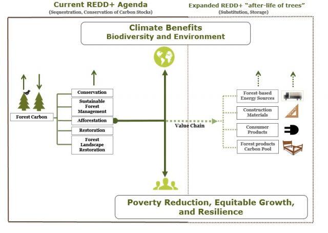 REDD+ Agenda