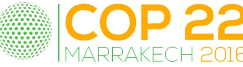 """The Road to Marrakesh: Bonn Climate Talks Begin, After Paris a """"New Era of Collaboration"""""""
