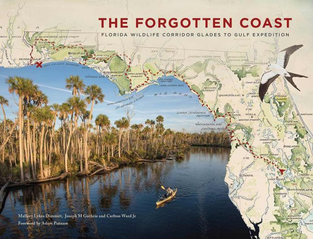 """Helping to preserve forests along Florida's """"forgotten coast"""""""
