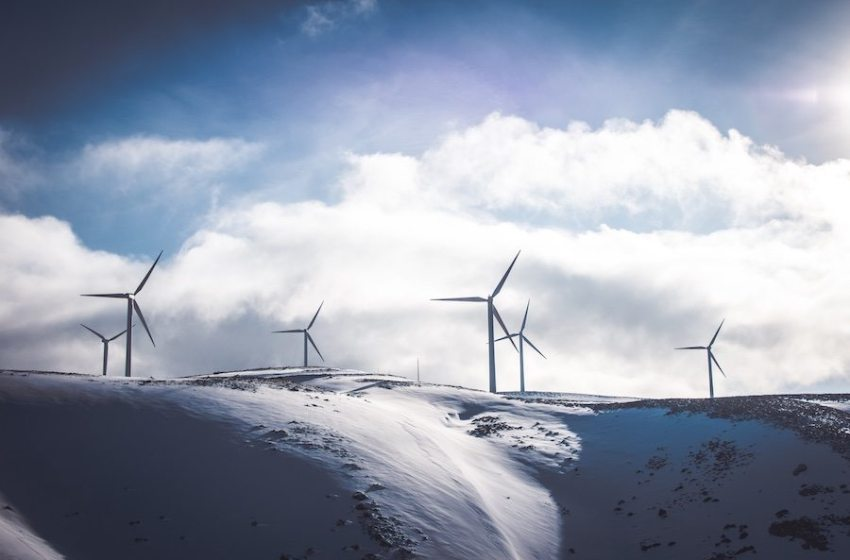 5 Industries Moving Toward Sustainability