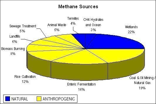 Methane sources: natural and anthropogenic