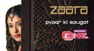 2006–2007: Zaara (Television Debut)