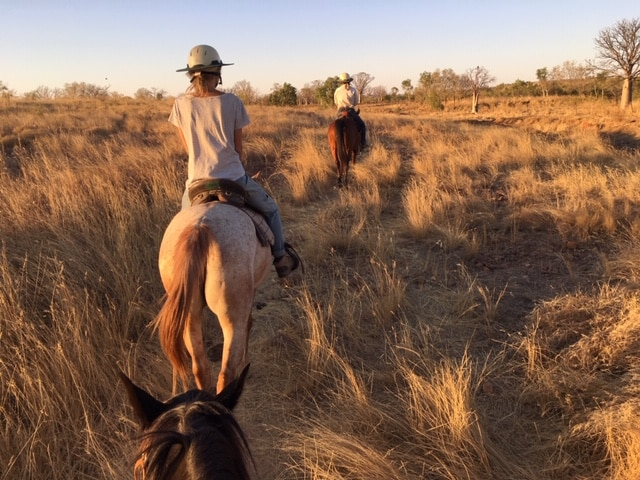 Ballade promenade à cheval dans les Kimberley