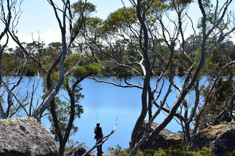 Radonnée en Tasmanie en pleine nature sauvage