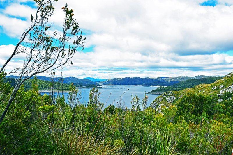 Paysage Tasmanie Lac Pedder Franlin Gordon Parc National