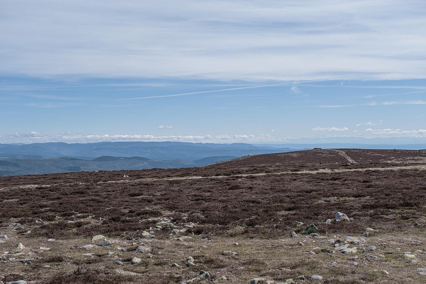 Paysage du Mont Lozère sommet de Finiels
