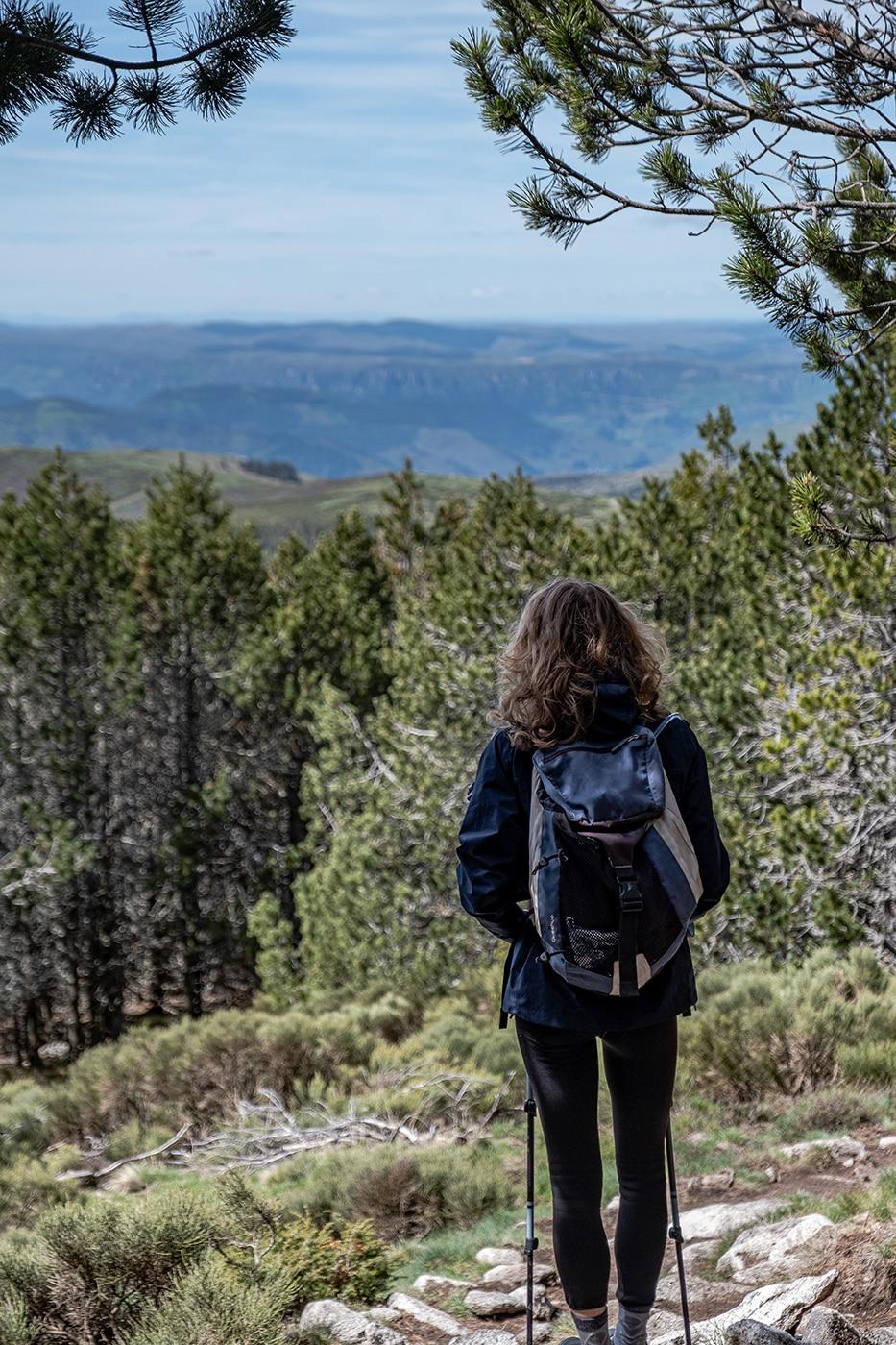 Randonnée du mont Lozère GR70