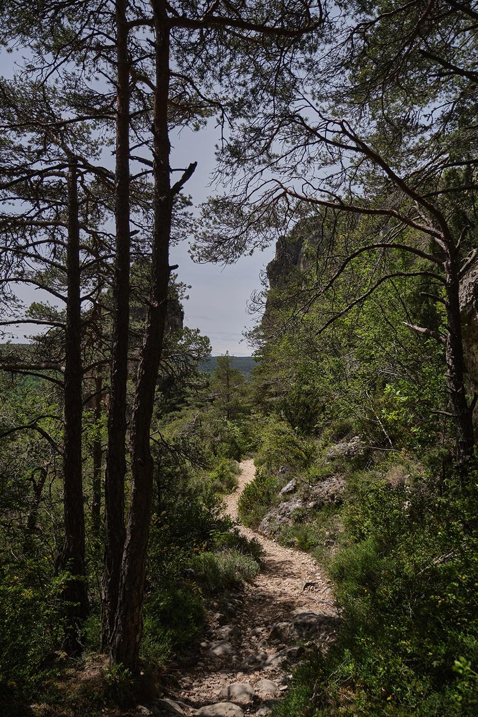 Sentier des corniches dans les Gorges de la Jonte