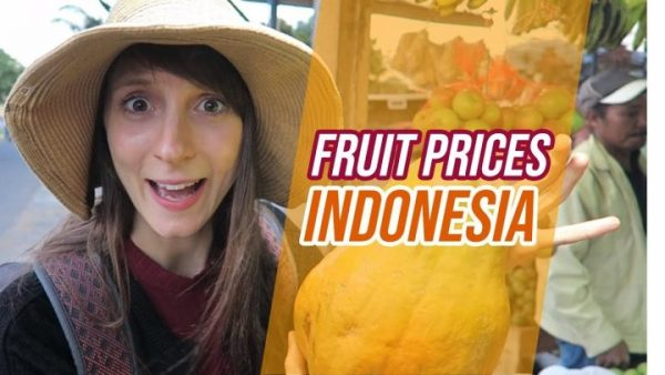 Fruit prices in INDONESIA - Globe in the Hat #19