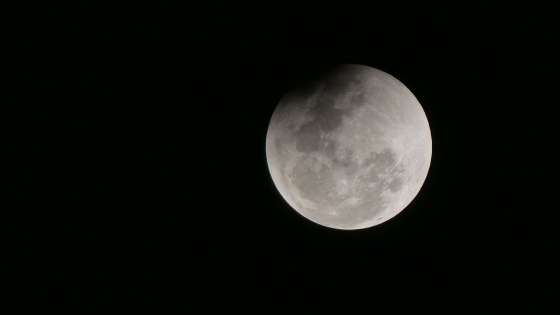 A view of the moon from India. (Image Credit: Wikimedia Commons/muffinn from Worcester, UK)