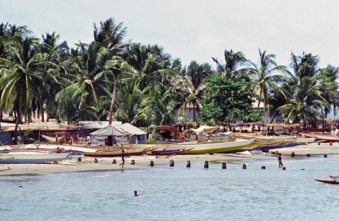 Gambia globe migrant