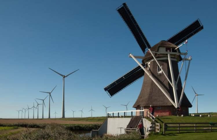 Wiatrak Goliath w przedniej części farmy wiatrowej w Eemshaven w Holandii