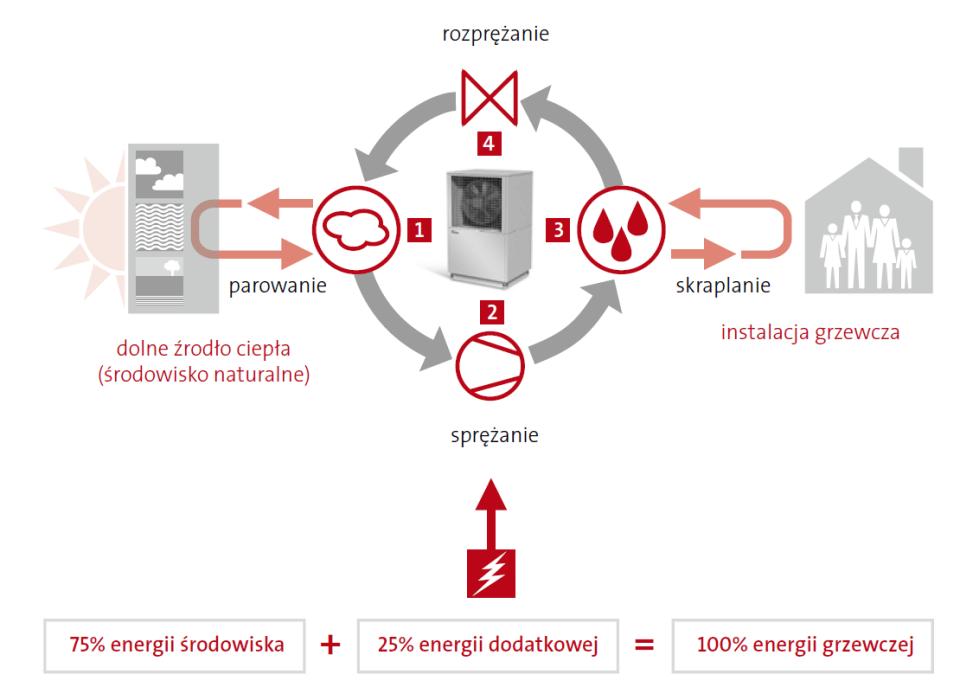 Graficzna prezentacja zasady działania pompy ciepła