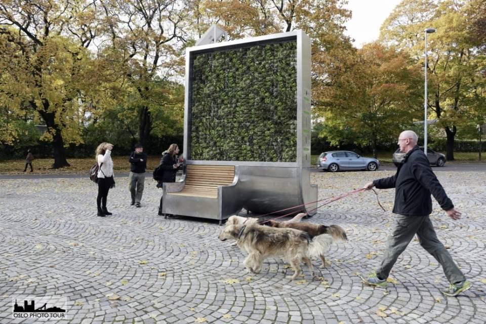 City Tree w Oslo