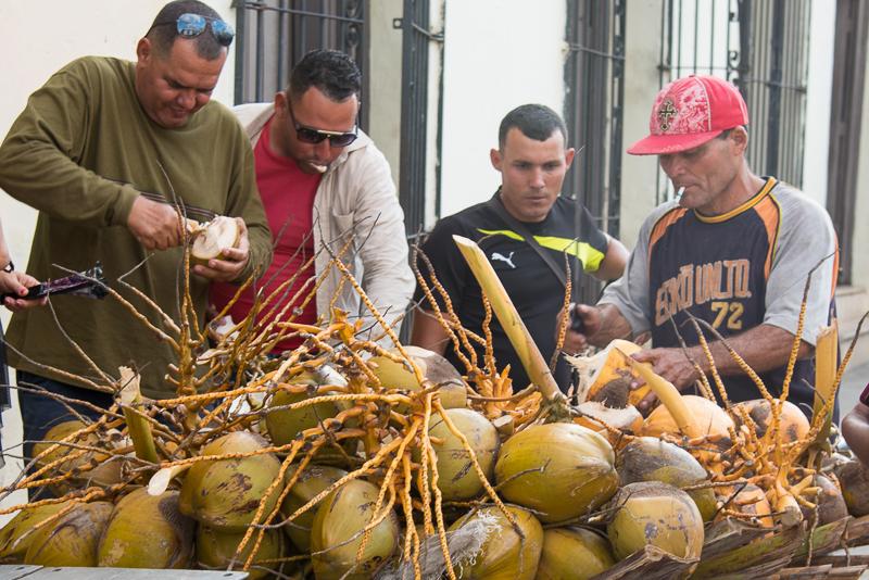 Cuba - Camaguey, noix de coco