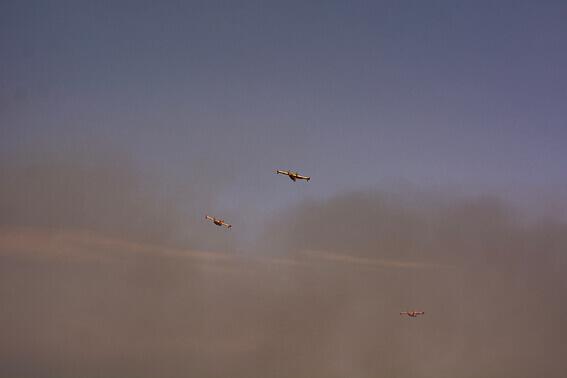 France - Baie de Collioure, canadairs sortant du nuage de fumée