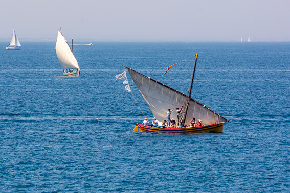 France - Baie de Collioure, barques catalanes
