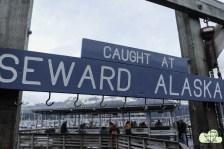 Seward 13