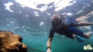 Unterwasser 9