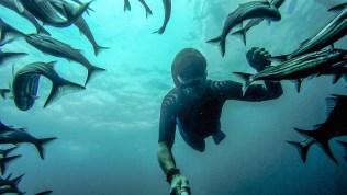 Unterwasser 19