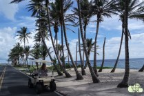 San andres 10
