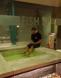 Josh braving the fish spa