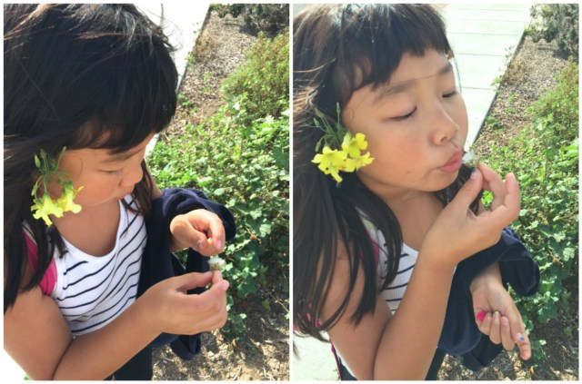 Blowing on dandelions is one of her favorite things to do