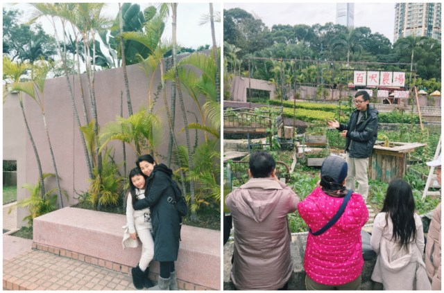 At Kowloon Park learning about rooftop gardening