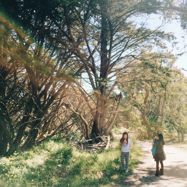 Impromptu hike