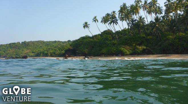 Wir haben das Paradies gefunden, es liegt in Südgoa