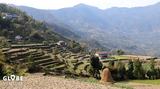 Gurung Siedlung mit terassenförmigen Feldern -dhampus nepal