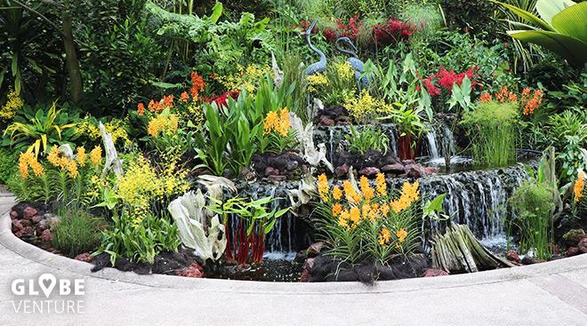 National Orchid Garden Singapur