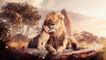 O que significa sonhar com um leão? Antecipe situações perigosas
